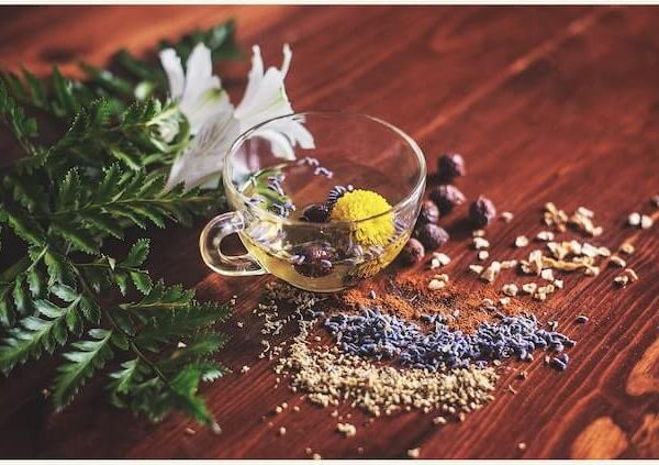 10 Best Herbal Tea for Colds and FLU Season