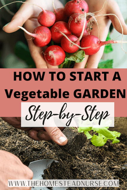 a pin about how to start a vegetable garden step by step
