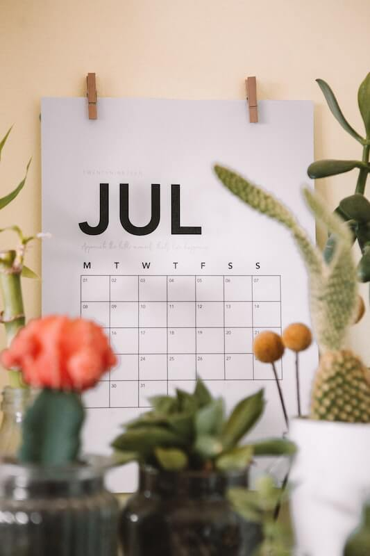 a calander on the month july surrounded by house plants