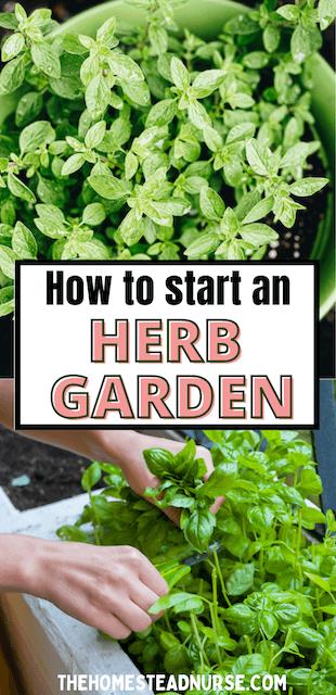 HOW TO START A HERB GARDEN PINTEREST PIN