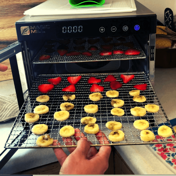 Magic Mill Dehydrator Review: Honest Opinion