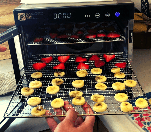 placing sliced strawberries and bannas in a food dehydrator